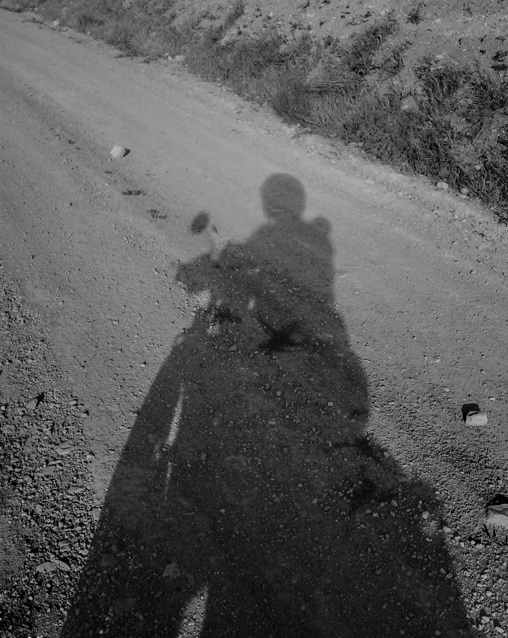 riding shadow