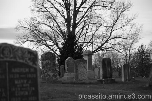 Late Autumn Cemetery