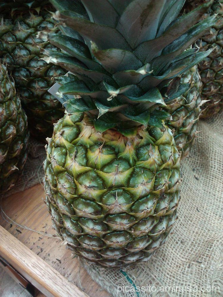 Pineapple Sitting on the Corner