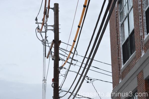 Webster Ave Power Lines