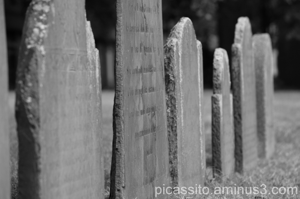 A Row of Graves