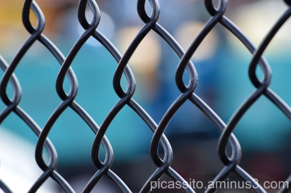 Behind the Chain Link Fence