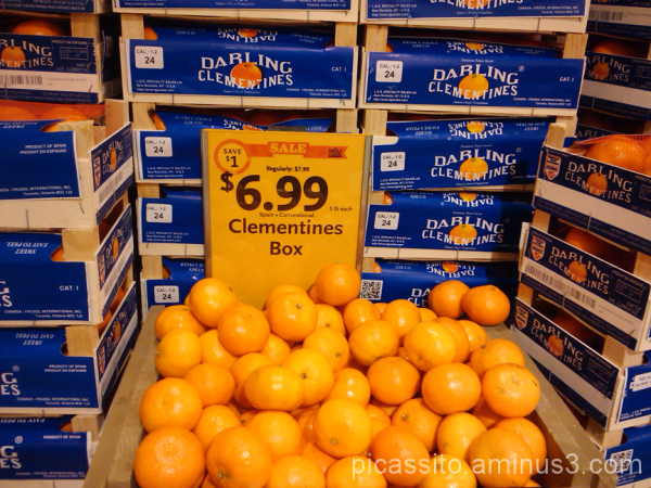 Boxes of Clementines