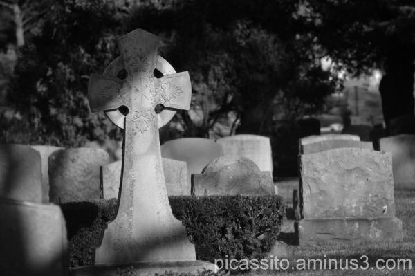 Cemetery Shadows