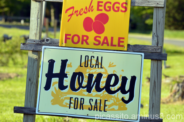 Fresh Eggs and Local Honey