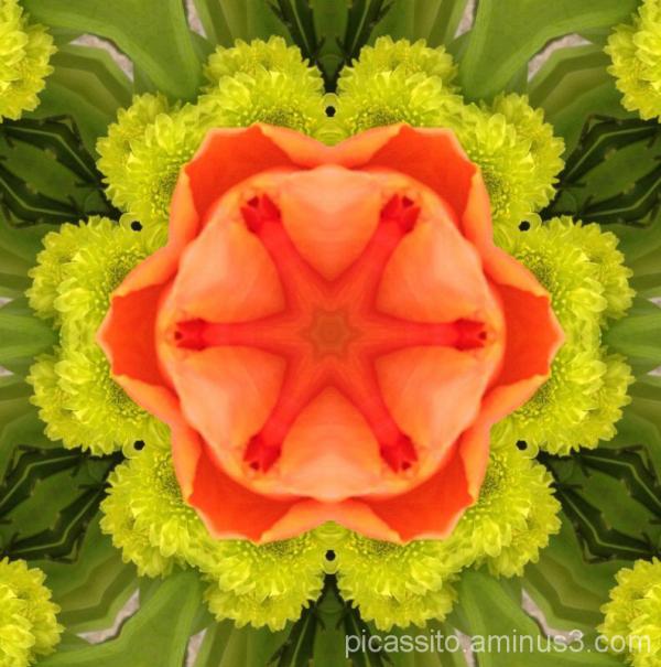 Kaleidoscope #5