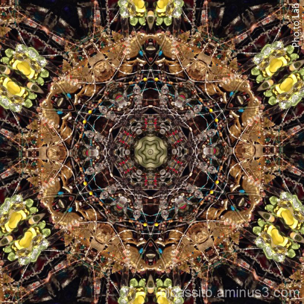 Nick Cave Kaleidescope 2