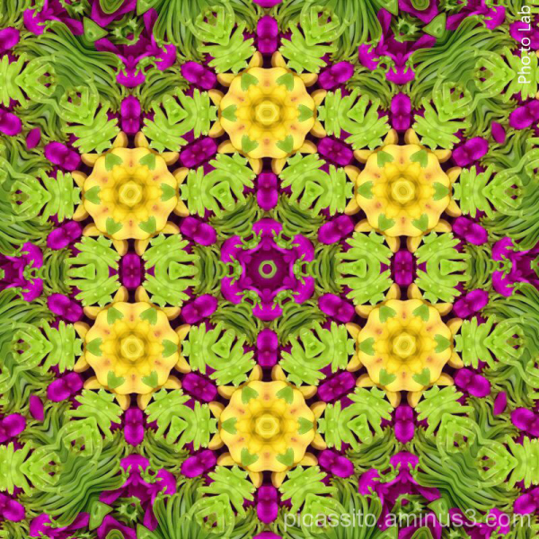Green Purple and Yellow