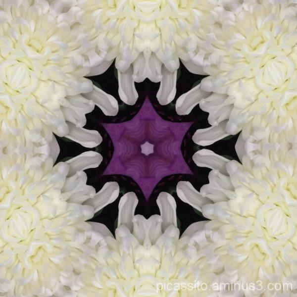 Winter White and Royal Purple Kaleidescope