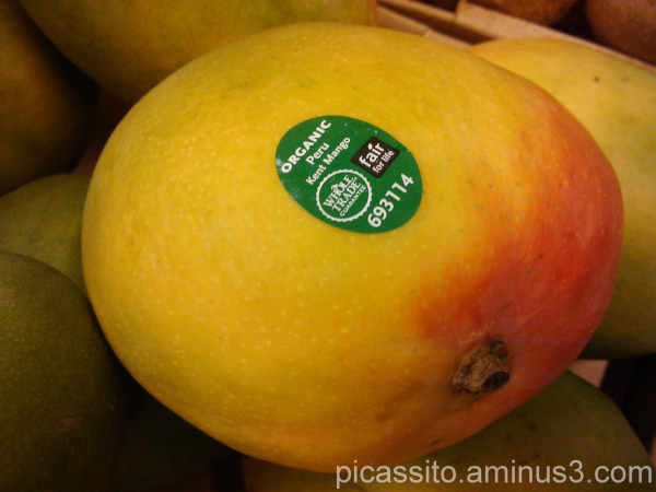 Kent Mango from Peru