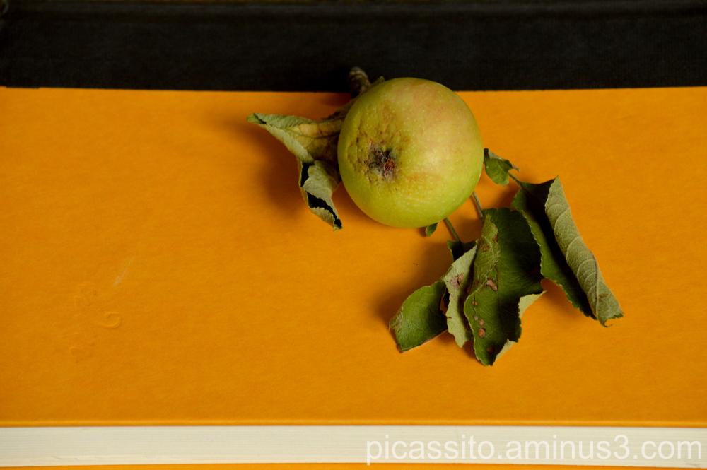 The Fallen Apple