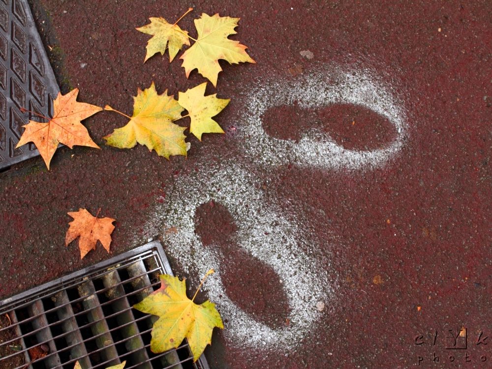 Footsteps painted leaves traces pas feuilles