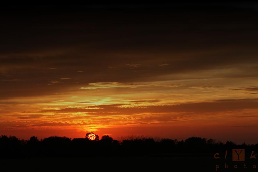 clYk sunset tree coucher soleil arbre