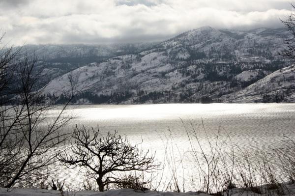 Grey day.