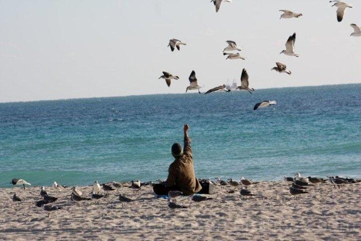 Homeless feeding gulls.