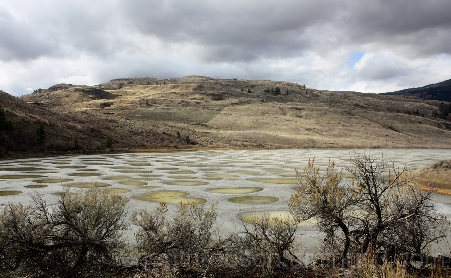 Spotted lake.