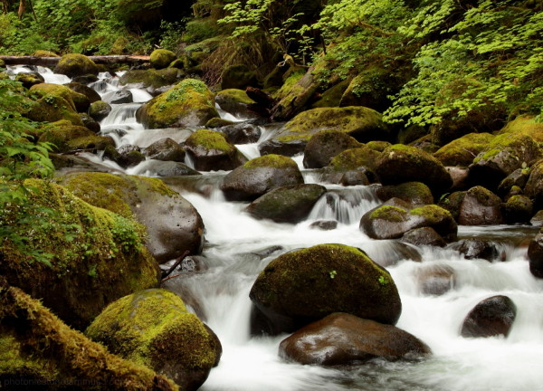 Oneonta Creek