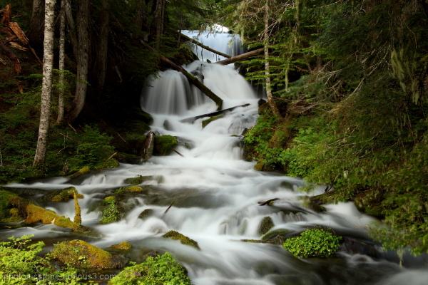 Unk Creek - Gifford Pinchot Nat Forest, Washington
