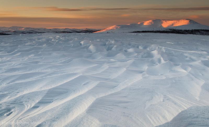 Twelvemile Summit, near Circle, Alaska