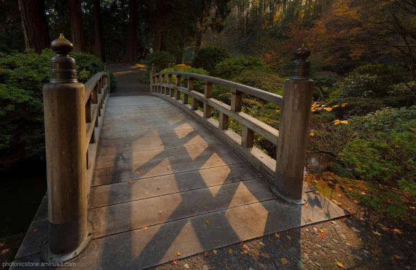 Portland Japanese Gardens - Autumn