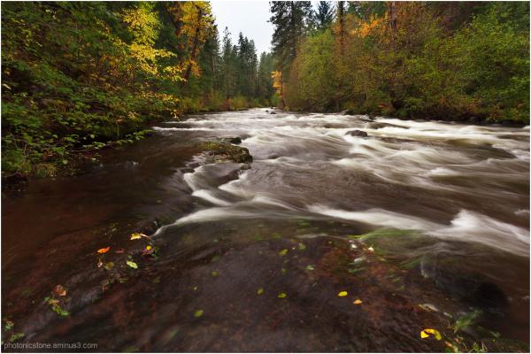 White Salmon River in Autumn