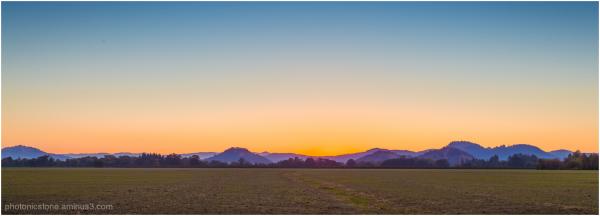 Sunrise over new grass