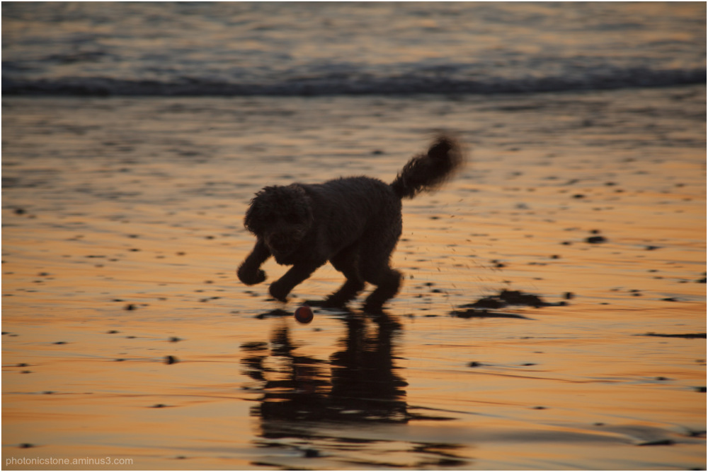 'Nita on the beach at sunset
