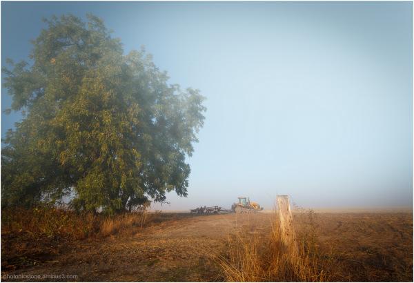 Foggy Tractor