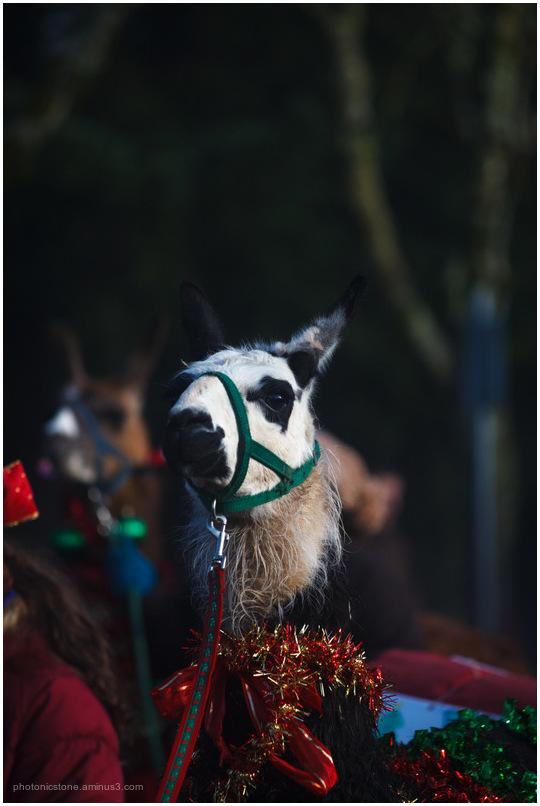 Christmas Parade I
