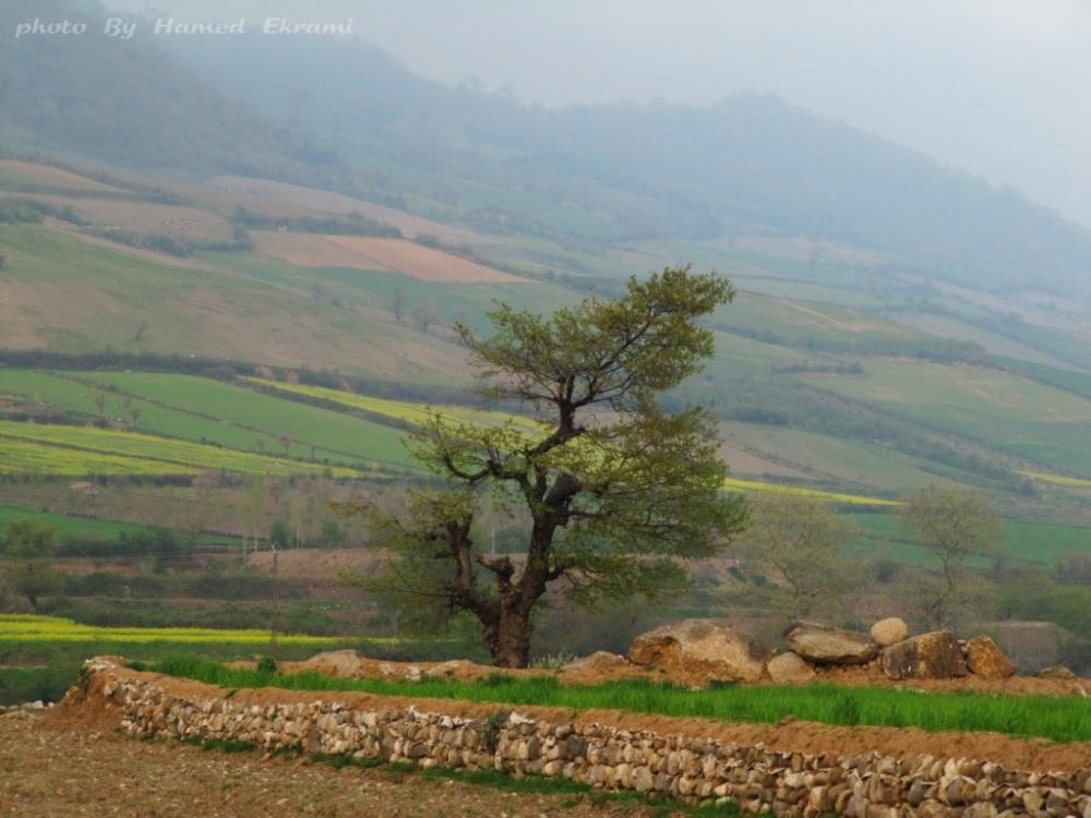 جاده شاهرود-آزادشهر