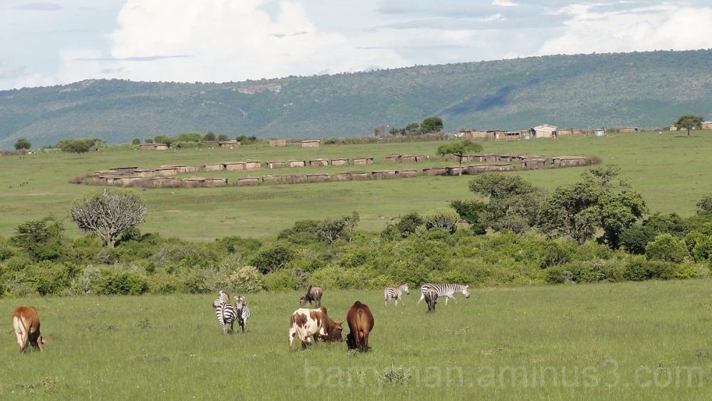maasai village kenya