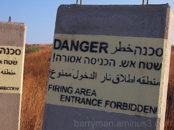 israel birding