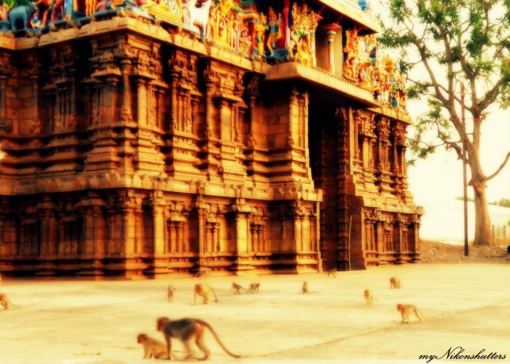 Azhagar Kovil @Madurai