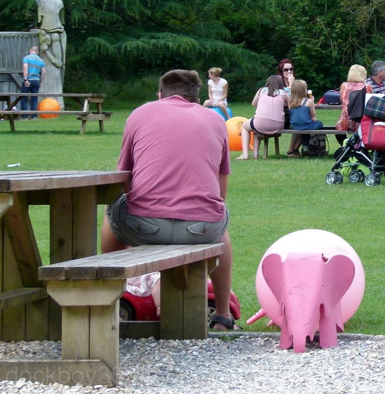 Pink Elephant Tuesday.