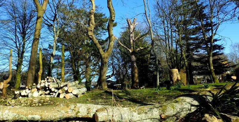 Deconstructed Woods ?.