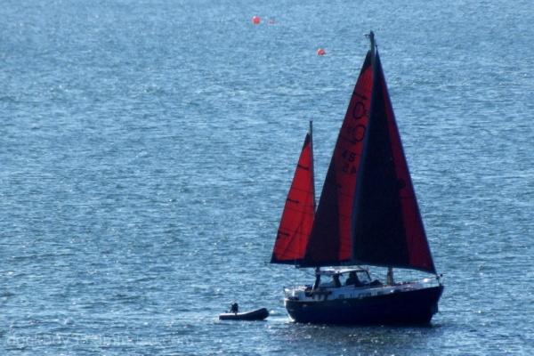 Boats . 2 .
