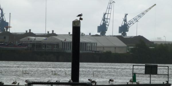 Cardiff Docks 2.