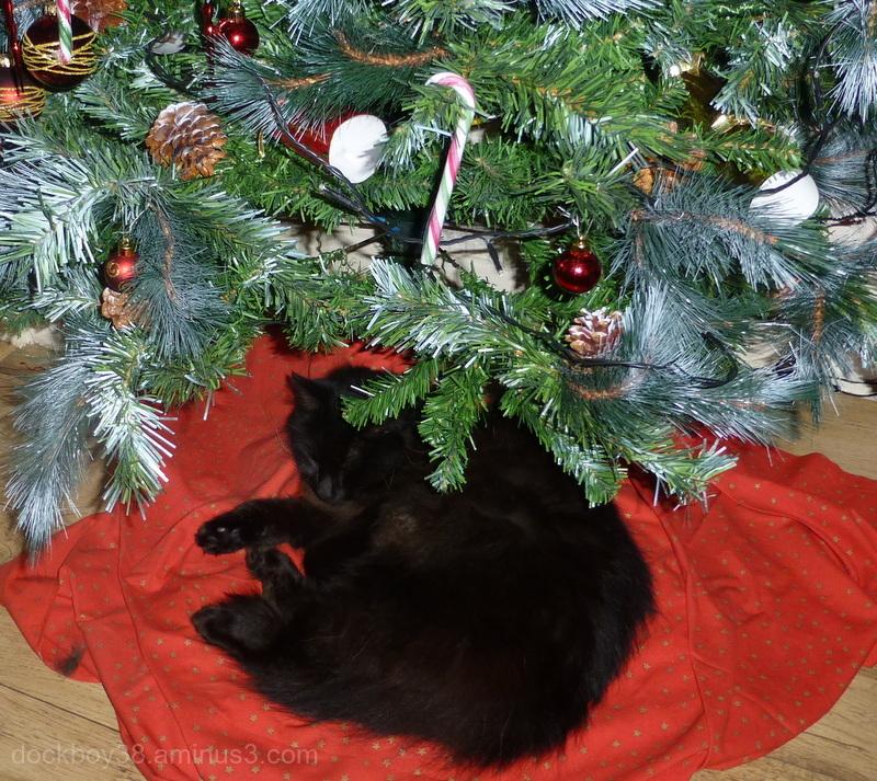 Waiting For Santa ..