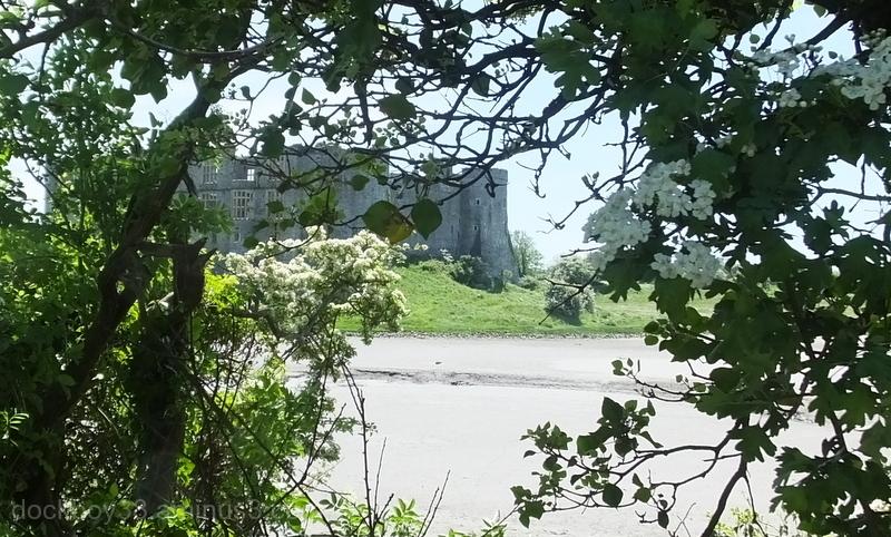 Carew Castle .
