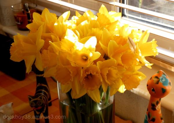 Golden Bouquet .........