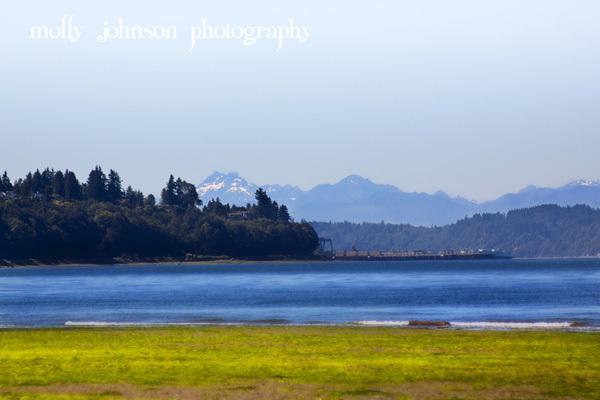 Olympic Mountain from Everett, WA
