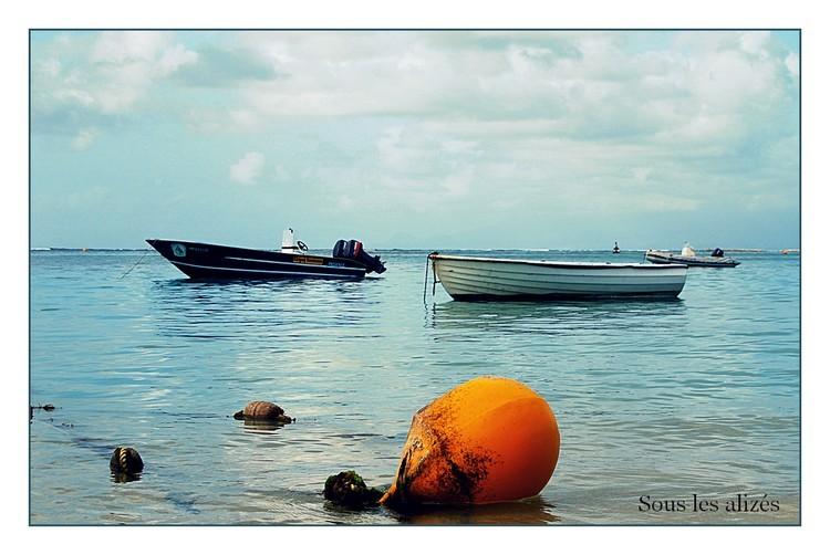 La bouée jaune et les barques