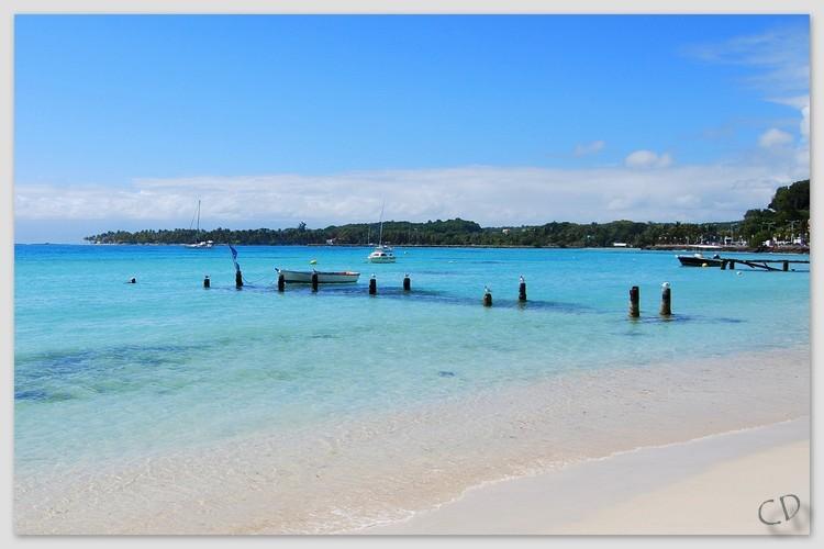 Sainte Anne (Guadeloupe)