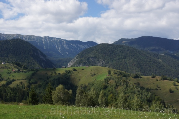 The Wonder of the Carpathians