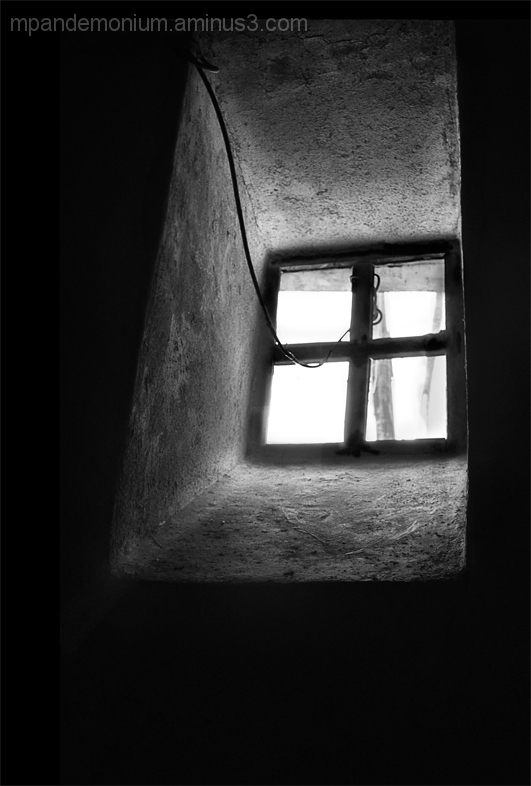The window of loneliness