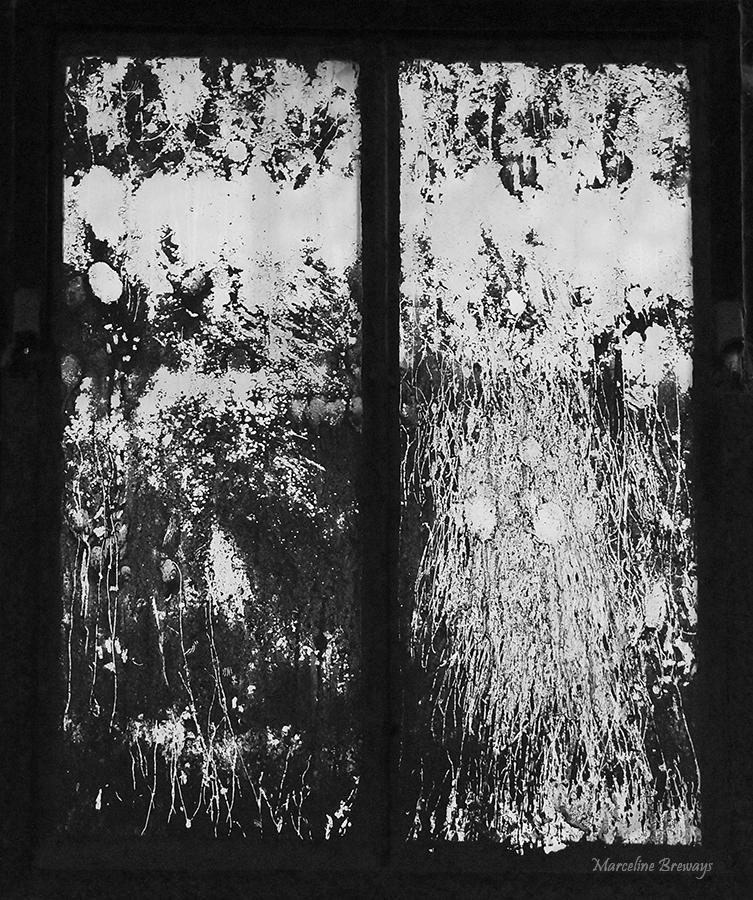 Dessins sur fenêtre