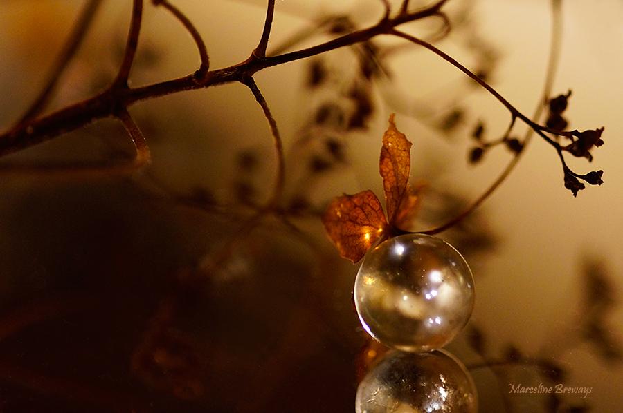 beaute lyrique d'une bulle transparente