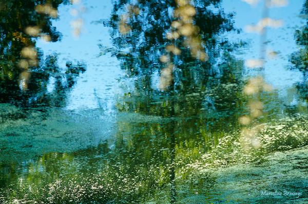 jeu de reflets sur l'eau
