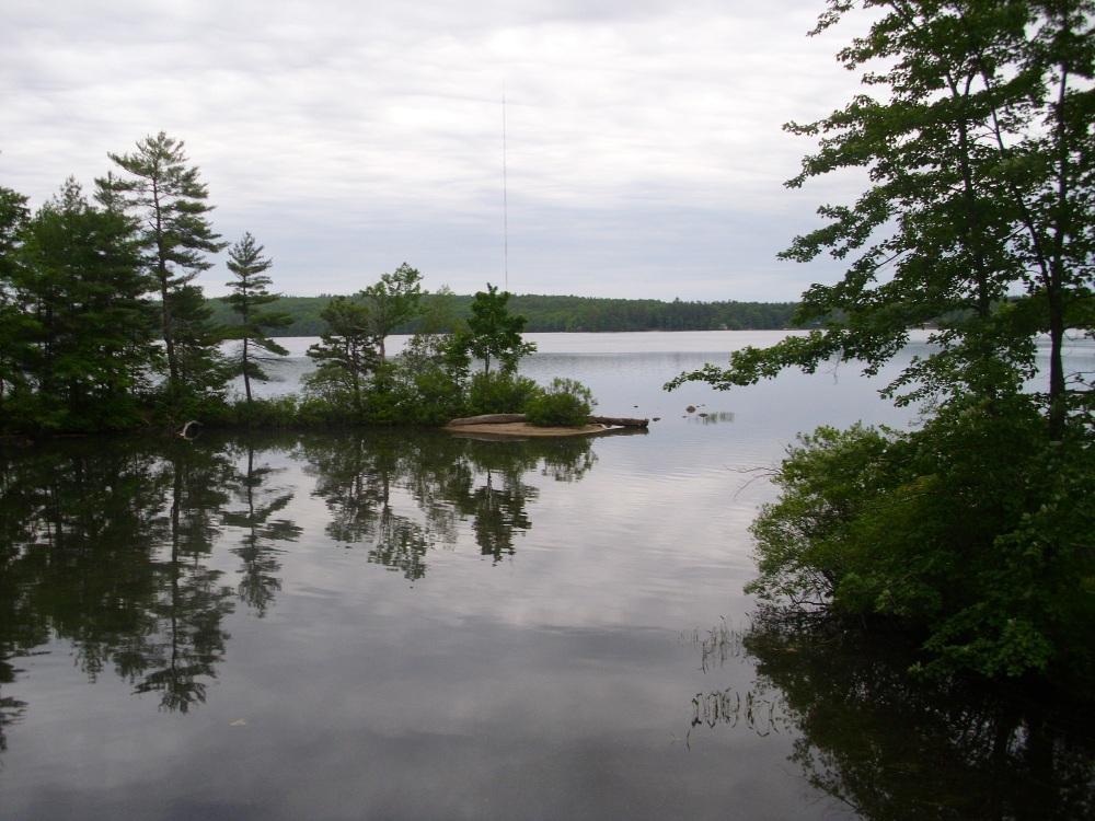 Panther Pond