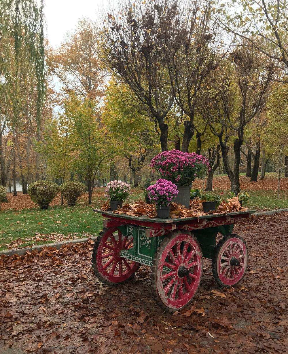 پائيزه